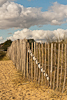 120922-4307 Fence on the dunes at Walberswick (Suffolk)